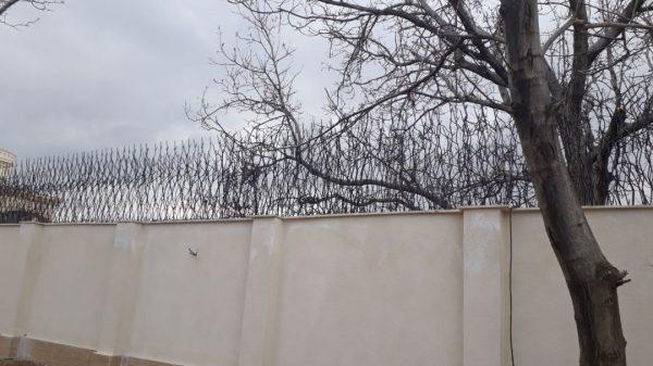 حفاظ شاخ گوزنی 5645645465