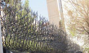 حفاظ شاخ گوزنی 974186